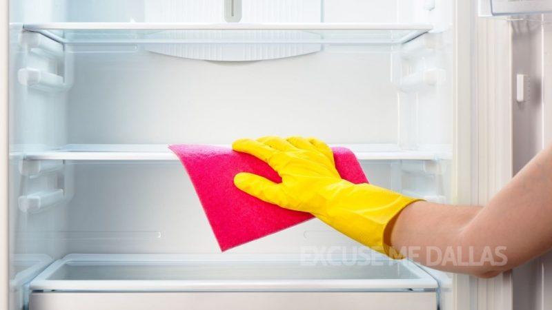 コバエ 死ん でる 冷蔵庫